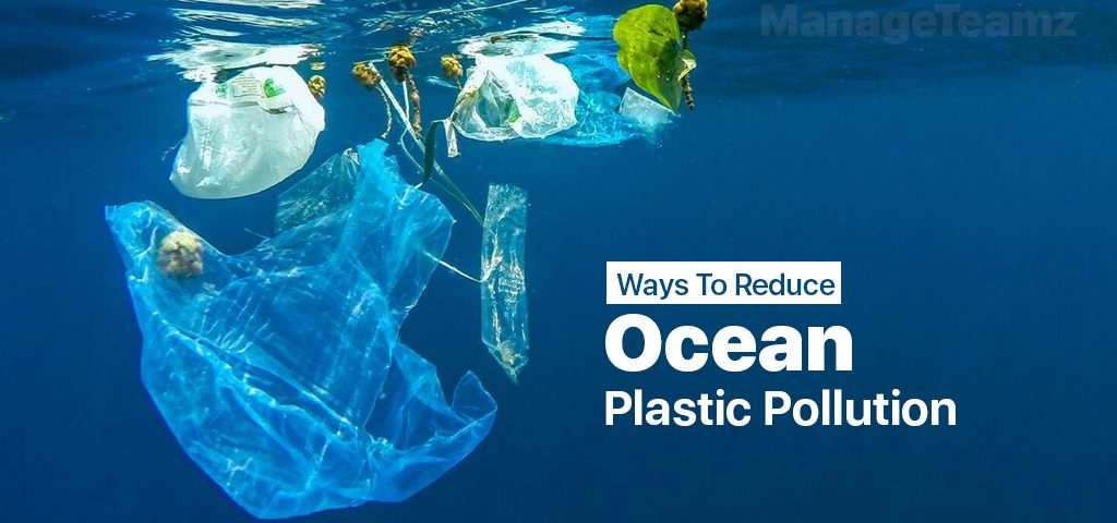 Ways To Reduce Ocean Plastic Pollution Today